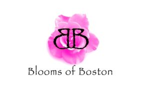 Blooms Of Boston Logo