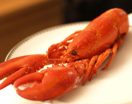 Hot Boiled Lobster